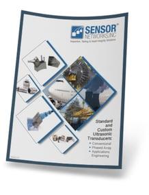 Custom and Standard Phased-Array Ultrasonic Transducer